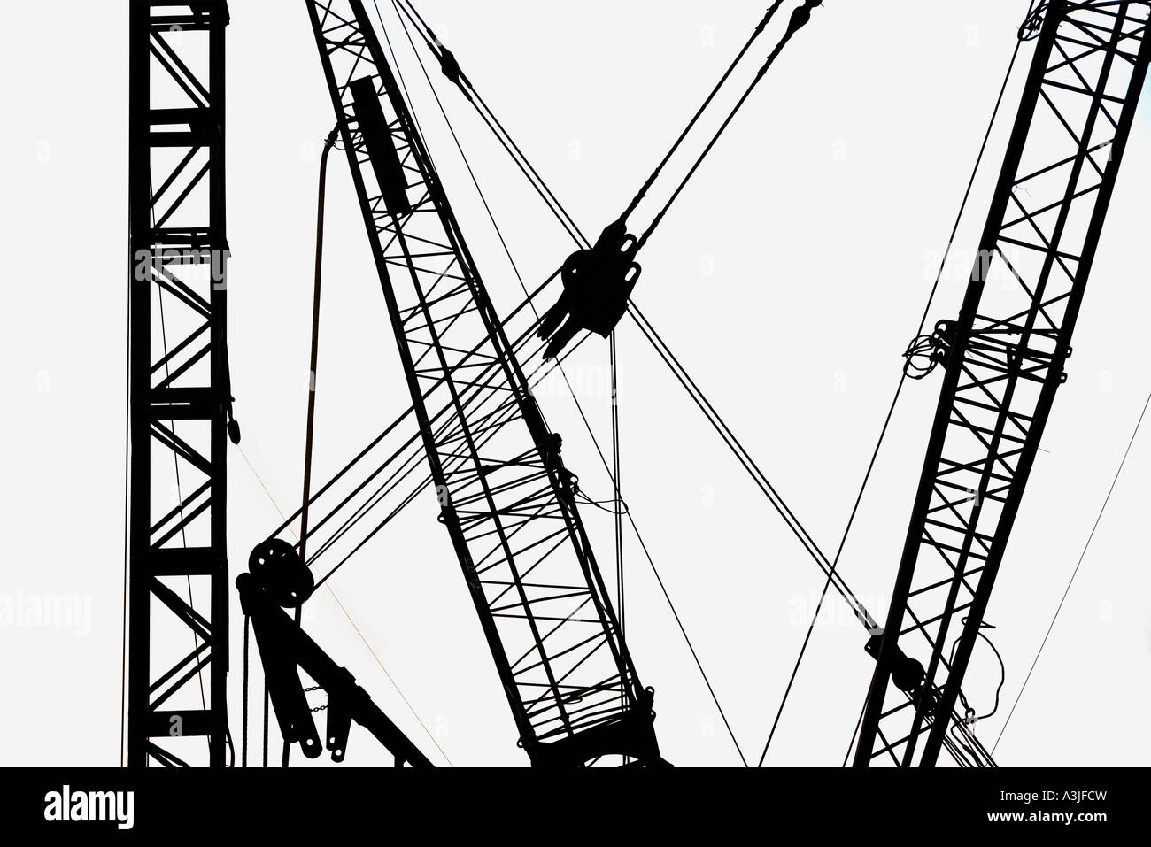 Cranes in silhouette Photo Stock