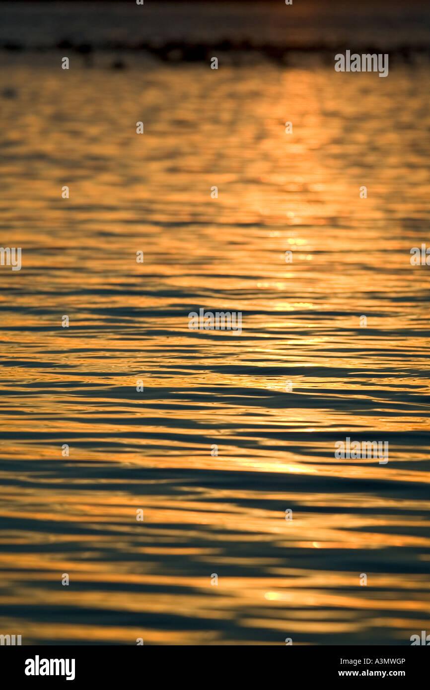 La lumière du soleil d'or au coucher du soleil réfléchie par la surface de l'eau Photo Stock