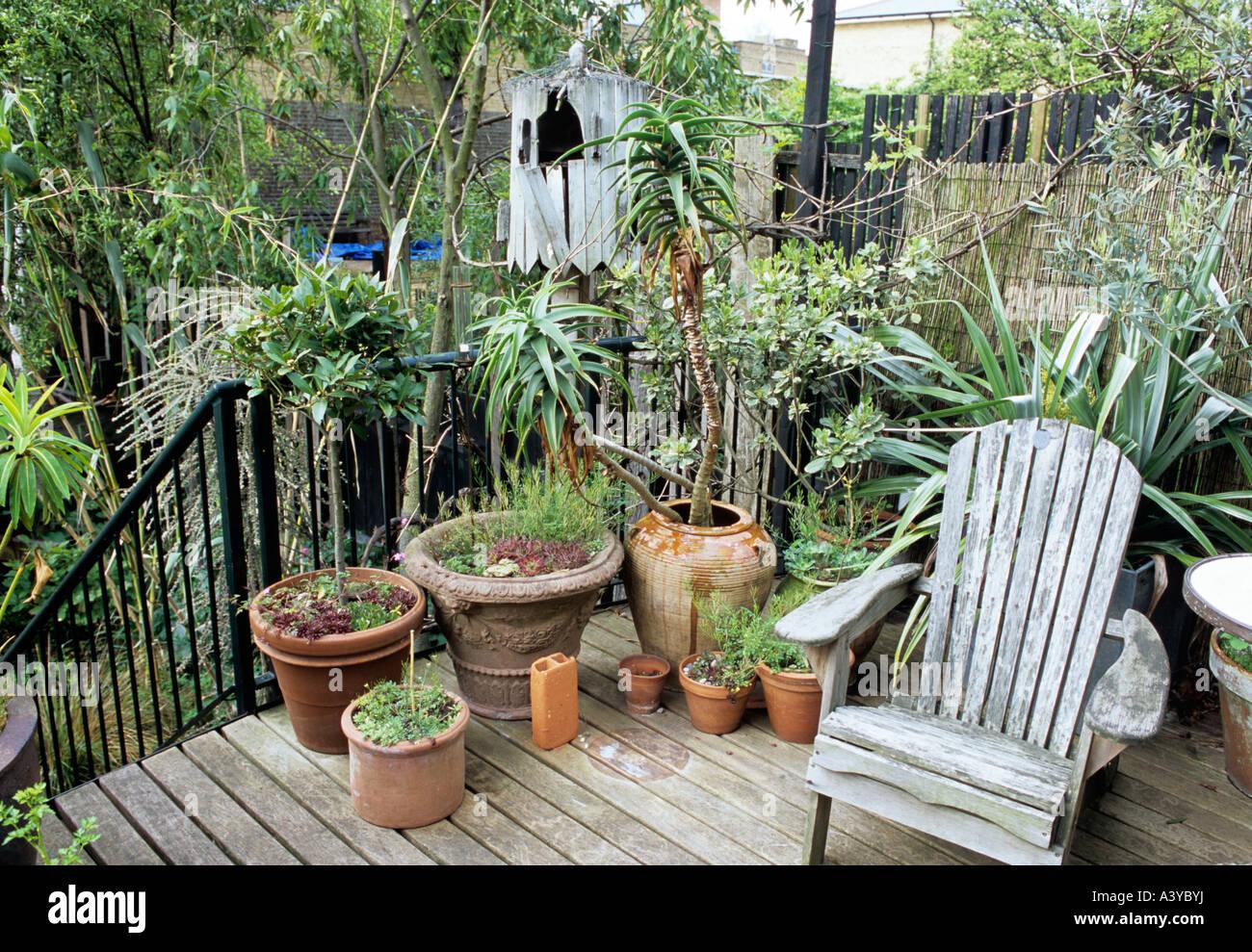 Groupe De Plantes En Pot Et Un Vieux Fauteuil De Jardin Sur Terrasse