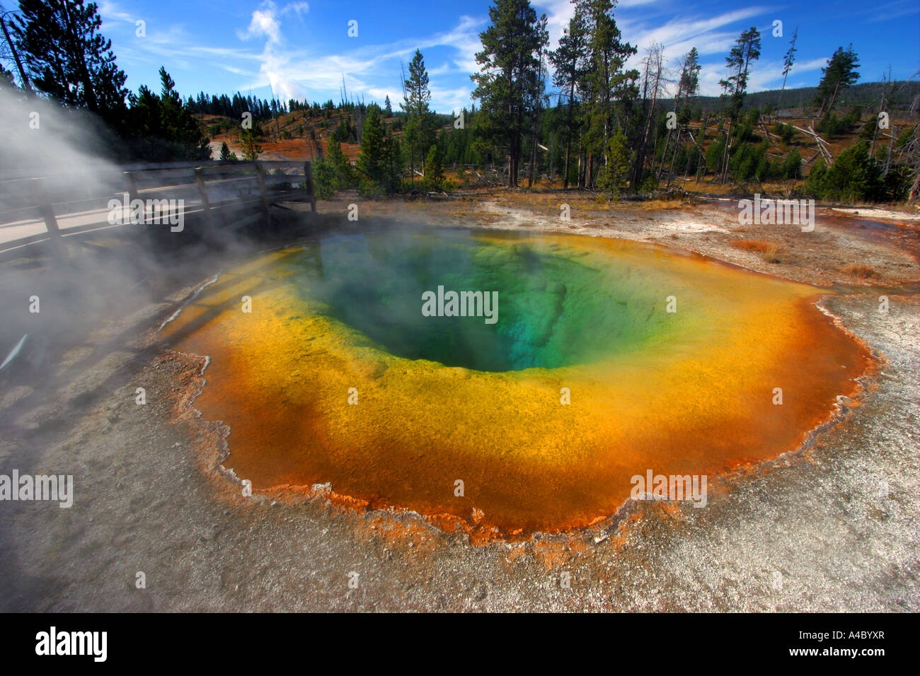 Morning Glory pool, le parc national de Yellowstone Banque D'Images