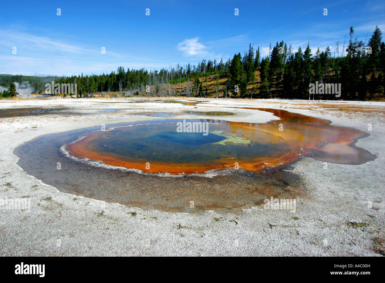 Hot spring dans Old Faithful Geyser, le parc national de Yellowstone, Wyoming Banque D'Images