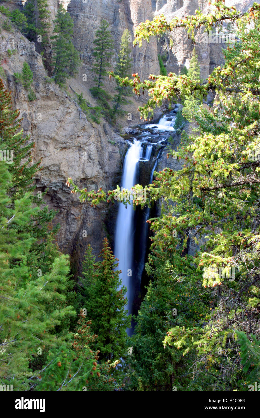 Tower falls, parc national de Yellowstone, Wyoming Banque D'Images