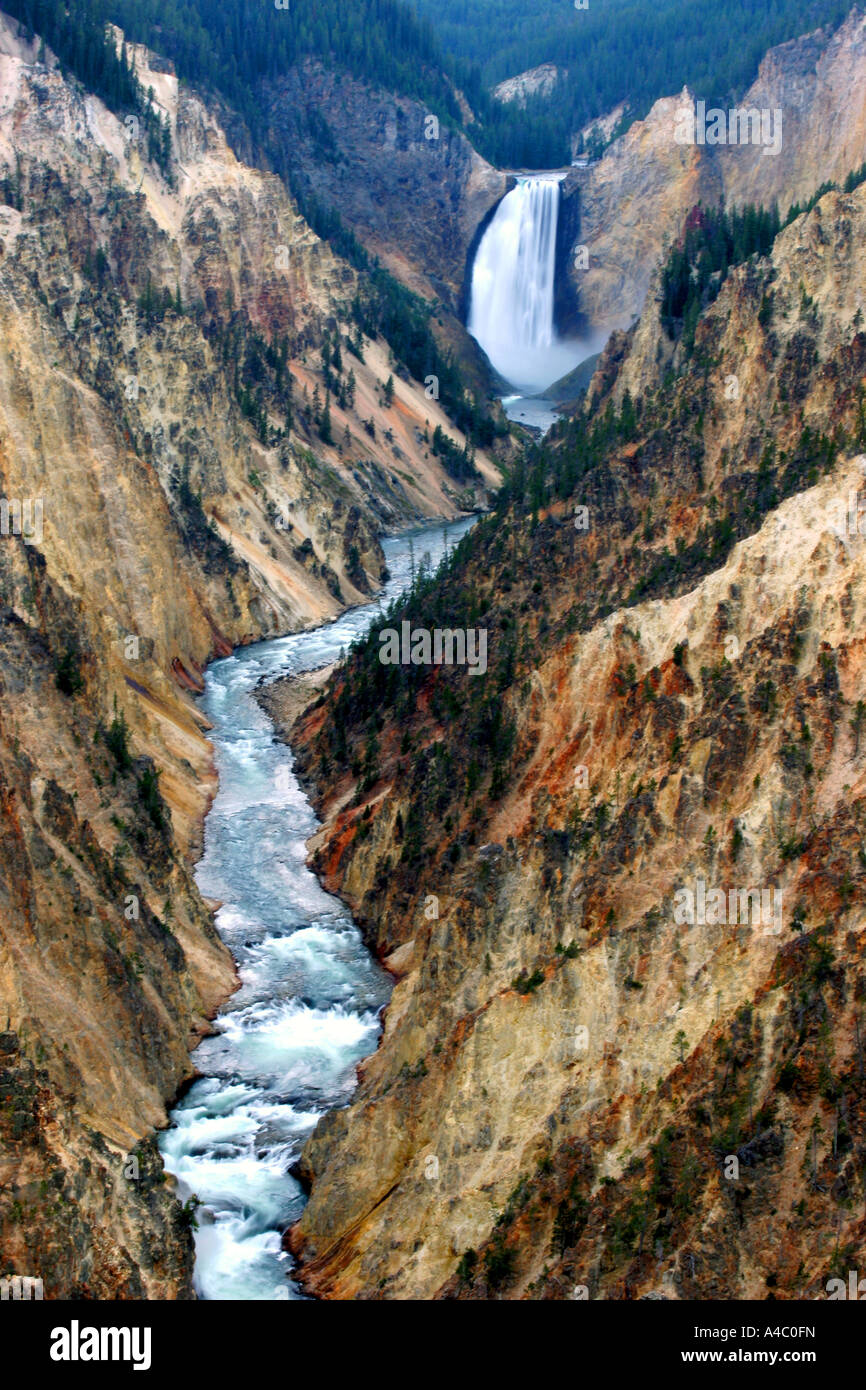 Yellowstone inférieur falls, parc national de Yellowstone, Wyoming Banque D'Images