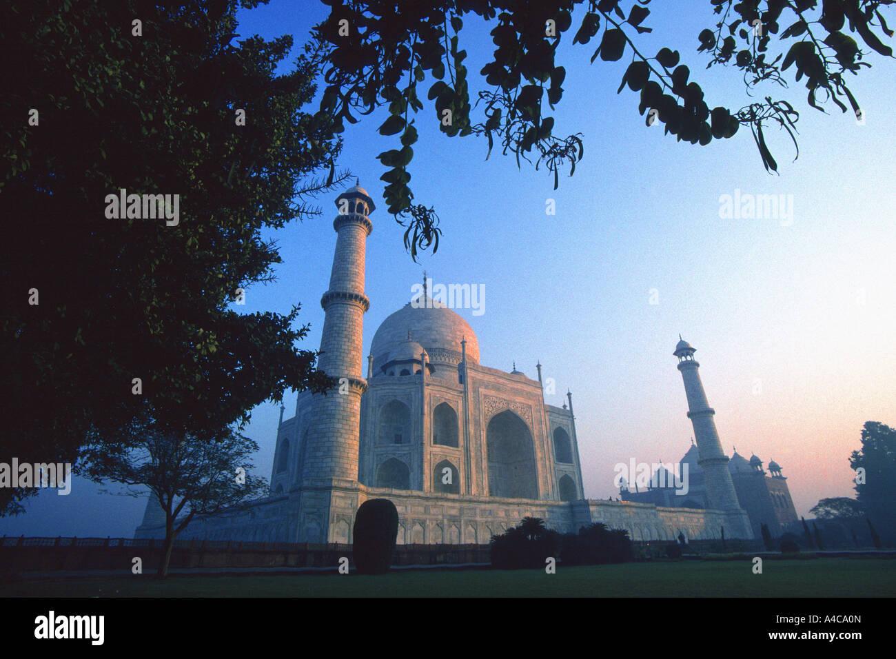 Lever du soleil au Taj Mahal, Agra, Inde Banque D'Images