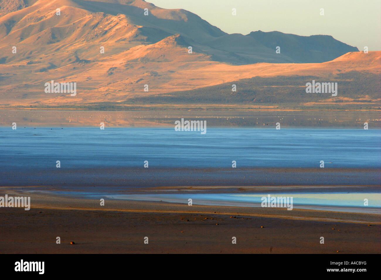 Grand lac salé en Utah, matin Banque D'Images