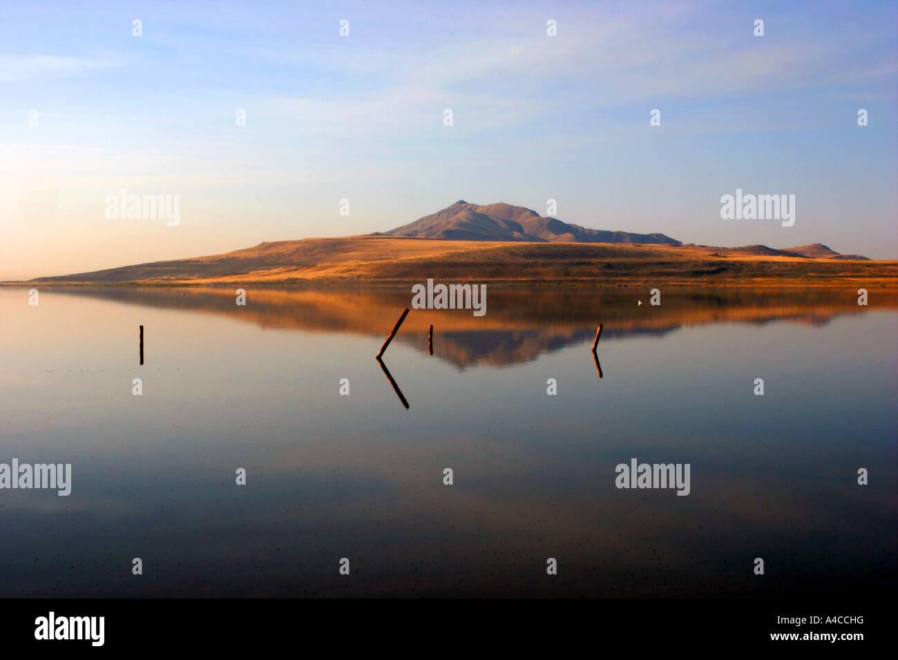 Réflexion Antelope Island, great salt lake, Utah Banque D'Images