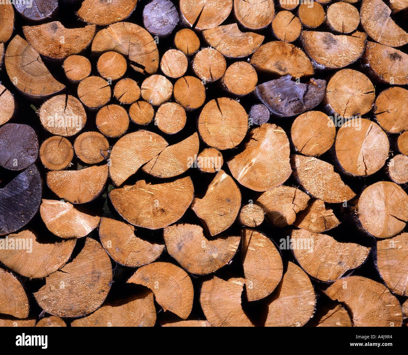 DE - La Bavière: tas de bois Photo Stock