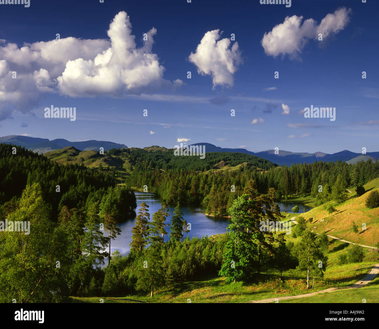 Fr - CUMBRIA : Tarn Hows dans le Parc National de Lake District Photo Stock