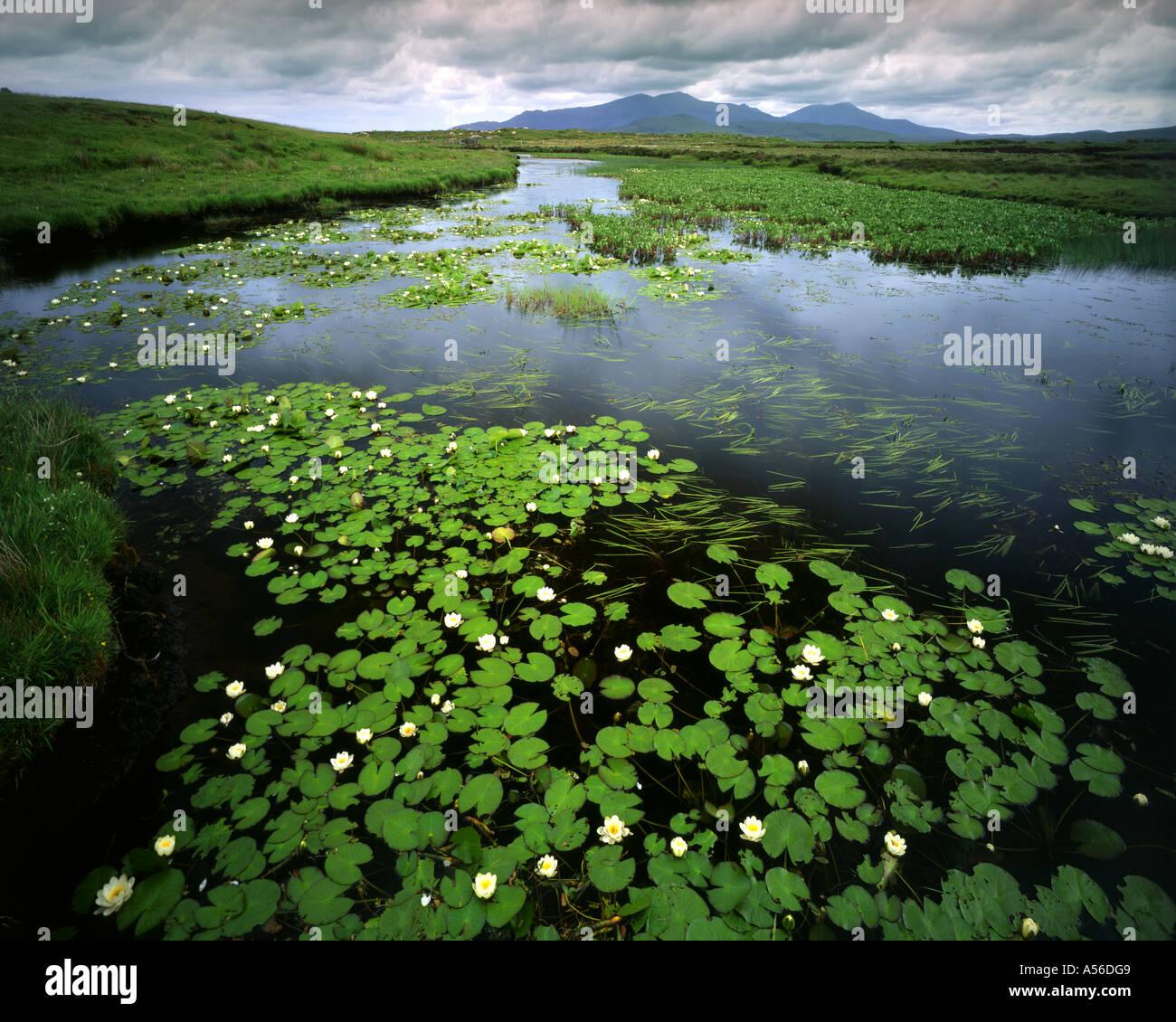 Fr - Scotland: Loch Chairnain sur South Uist montrant Mt. Et ben Corodale Hecla Photo Stock