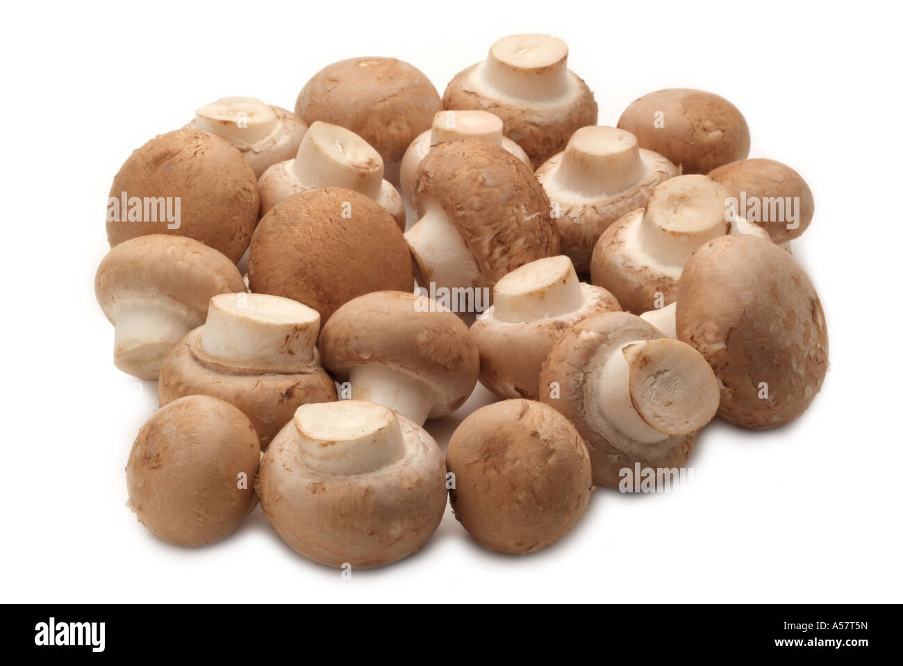 Bouton frais Champignons Champignons de paille marron naturel tout ingrédient de la récolte d'éléments nutritifs Banque D'Images