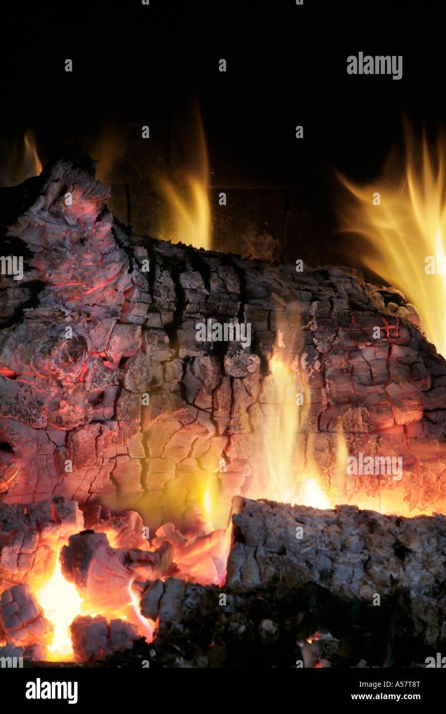 Close up of log feu de bois en feu feu de brûler les matières organiques naturelles physiques réaction flame hot scorch jaune rouge chaleur chaud Banque D'Images