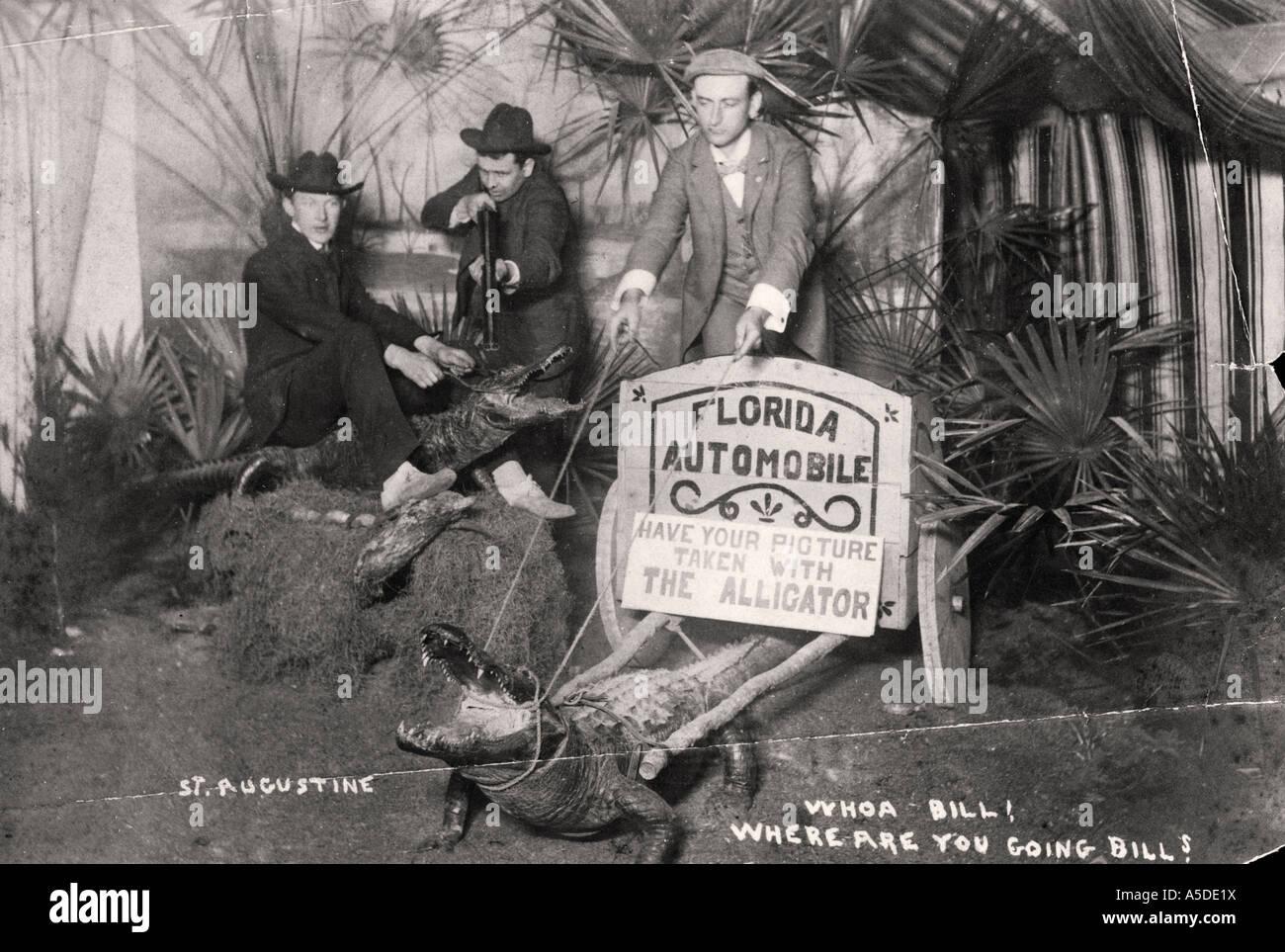 Carte postale humoristique de St Augustine en Floride Photo Stock