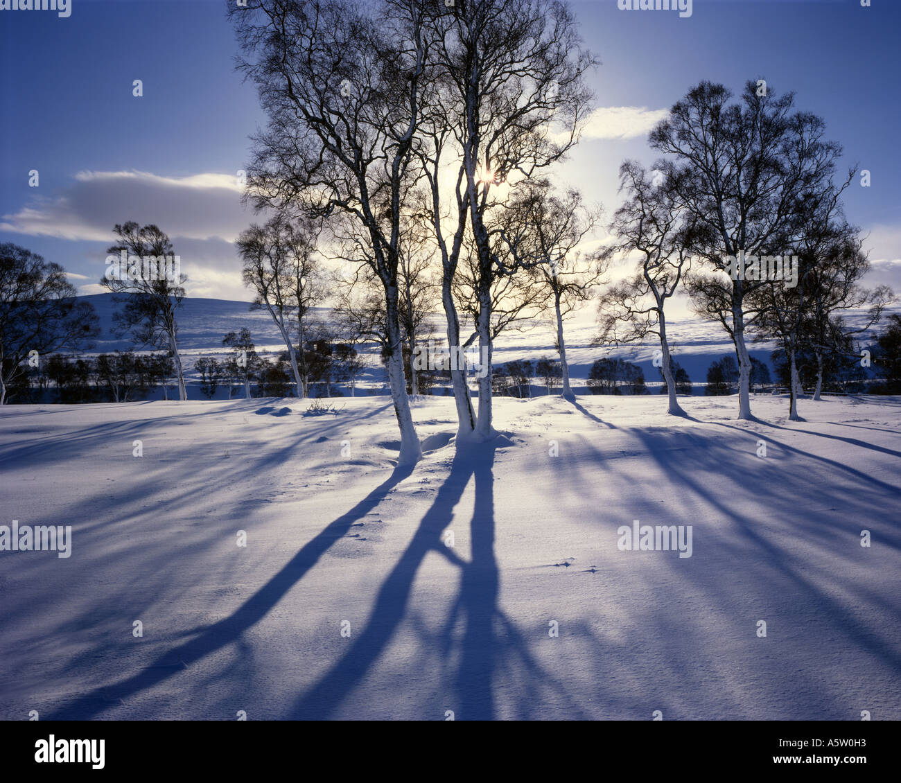 Gb - Ecosse : au début de l'hiver matin à Glen garry à tayside Photo Stock