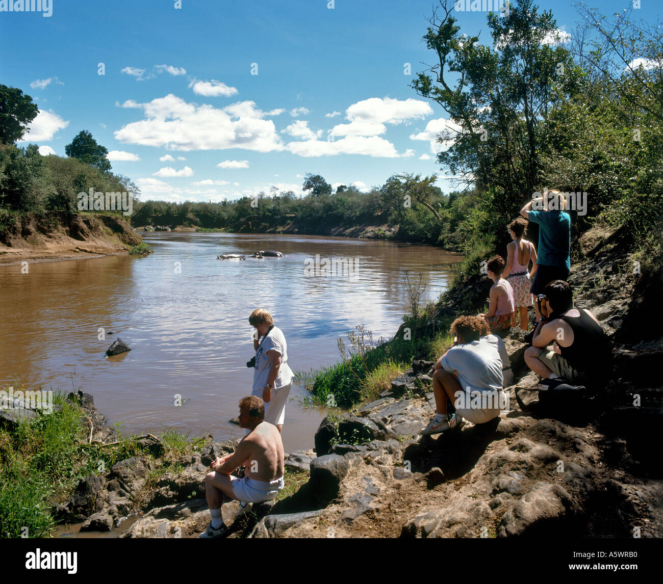 Les touristes à regarder les hippopotames dans la rivière Mara, la Réserve Naturelle de Masai Mara, Narok, Kenya, Banque D'Images