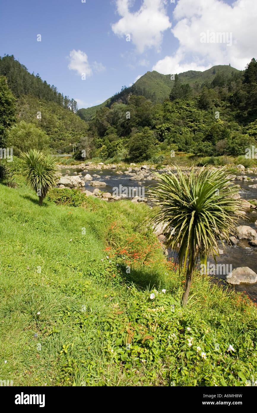 Ohinemuri river à l'entrée de la Gorge de Karangahake et promenade près de Paeroa Nouvelle-zélande Photo Stock