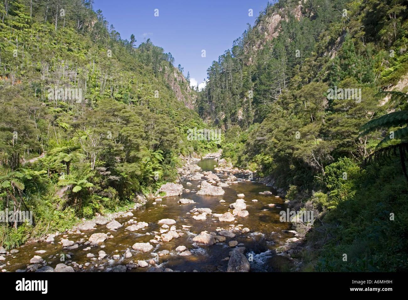 Ohinemuri River près de l'entrée à Karangahake Gorge près de Paeroa Nouvelle-zélande Photo Stock