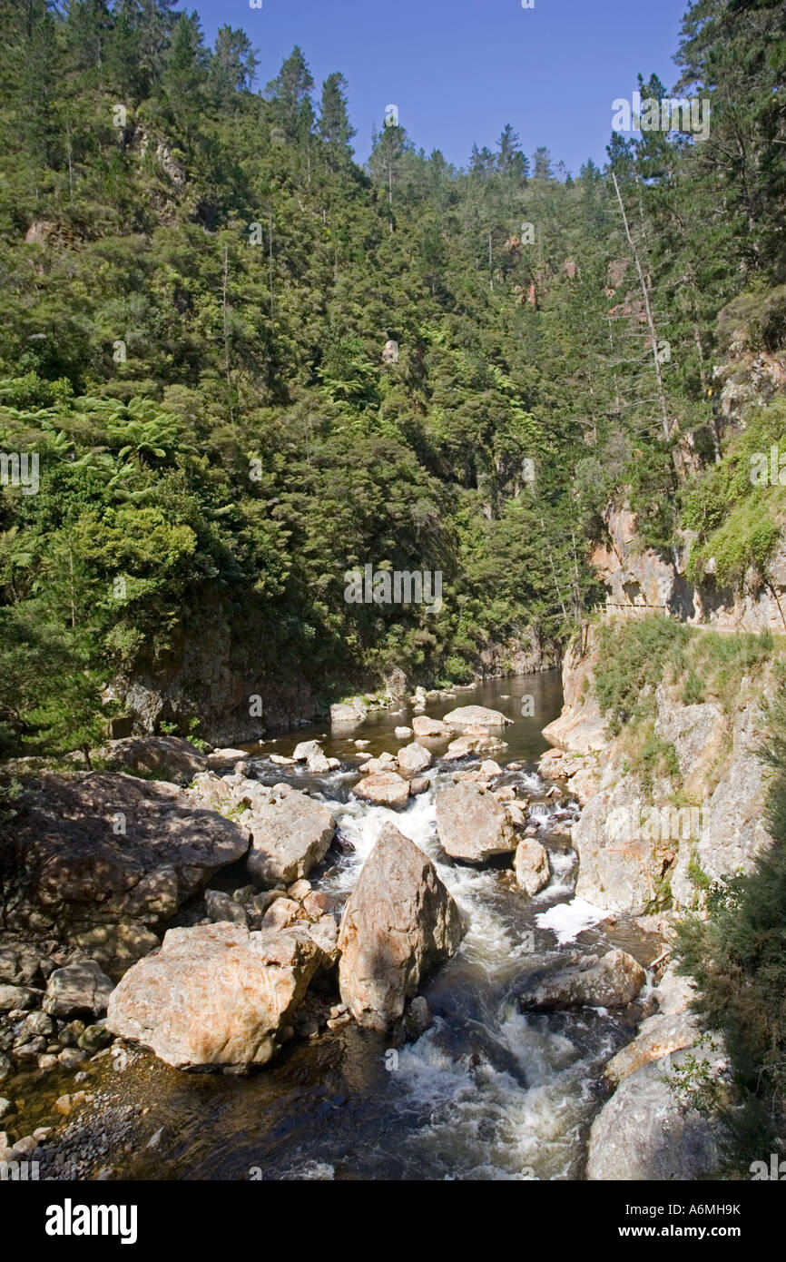 Ohinemuri et promenade de la rivière Karangahake Gorge près de Paeroa Nouvelle-zélande Photo Stock