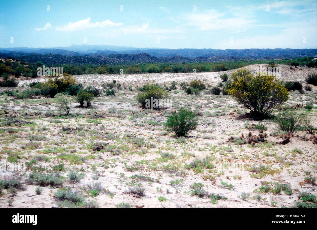 Plateau salé dans l'ouest de l'Argentine Banque D'Images