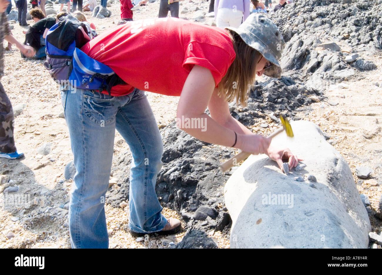 Fissuration des roches, géologue amateur probablement ouvert à la recherche de fossiles le long de la Photo Stock