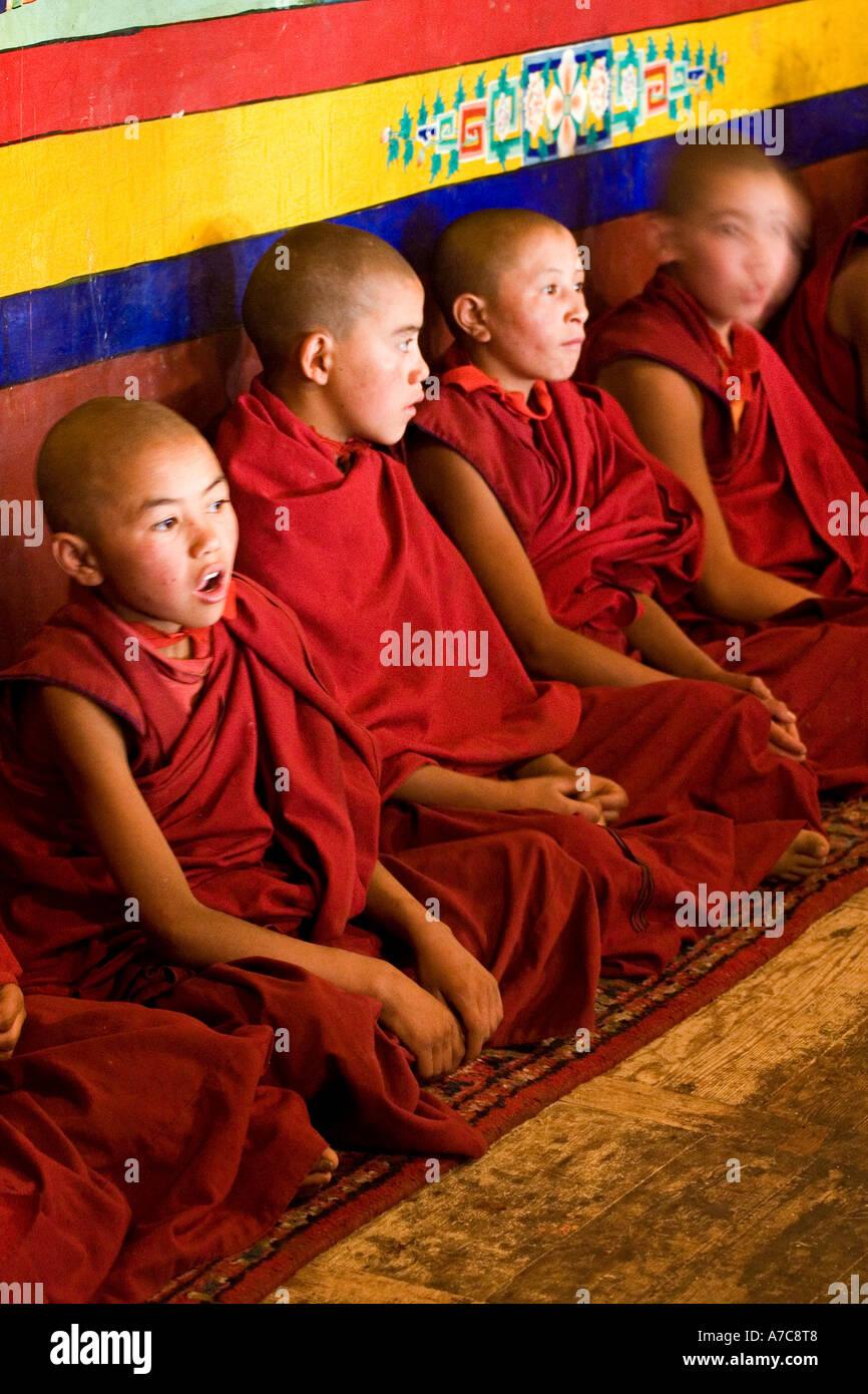 Jeunes moines et religieux de l'ordre Gelupa pendant Puja - Likir Gompa - Ladakh Himalaya Indien - Photo Stock