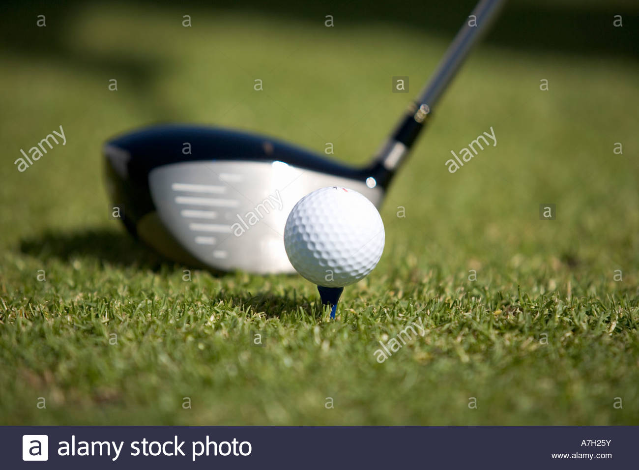 Close-up d'un club de golf et la balle sur un tee Photo Stock