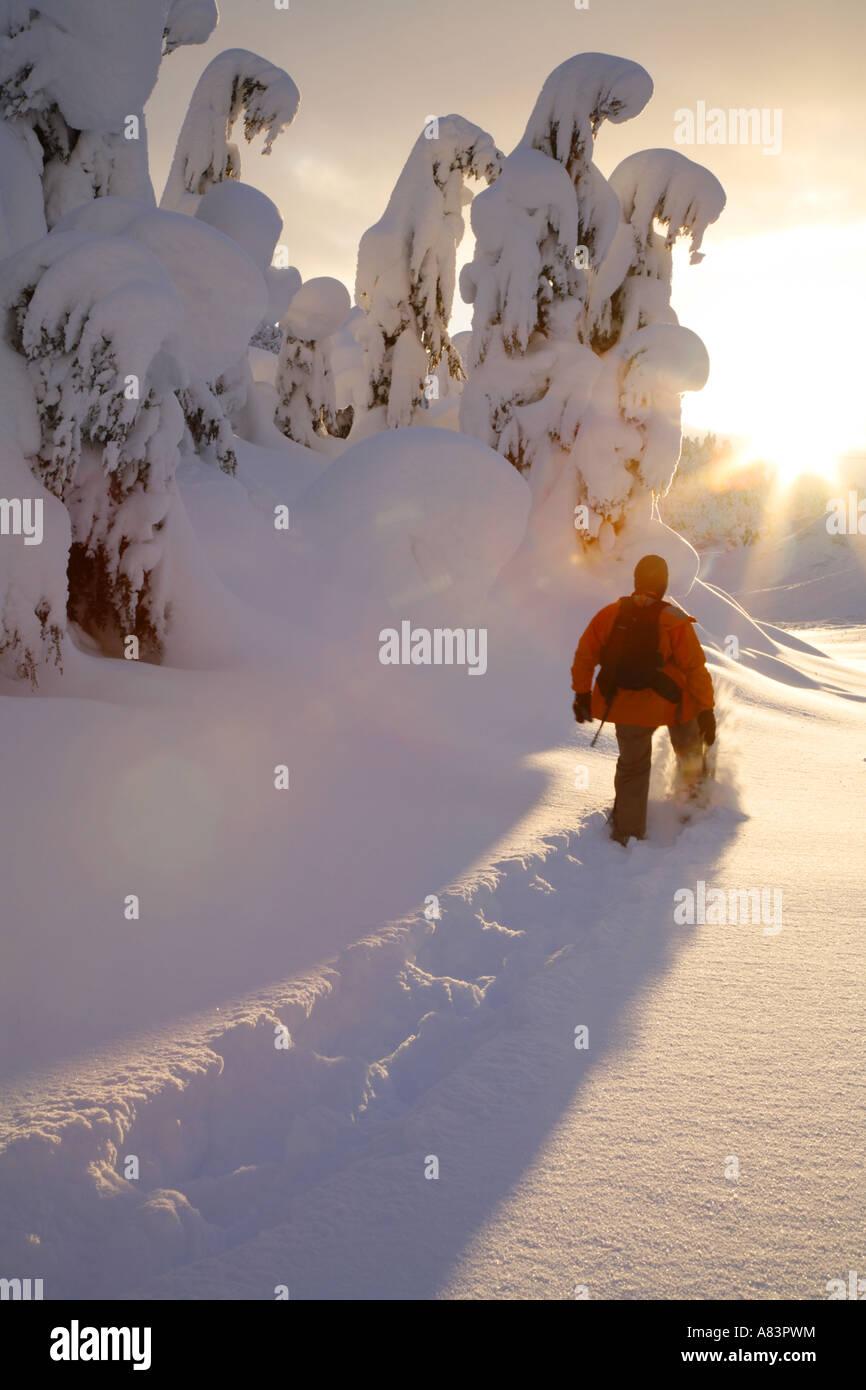 La raquette dans la forêt nationale de Chugach Turnagain Pass modèle Alaska publié Photo Stock