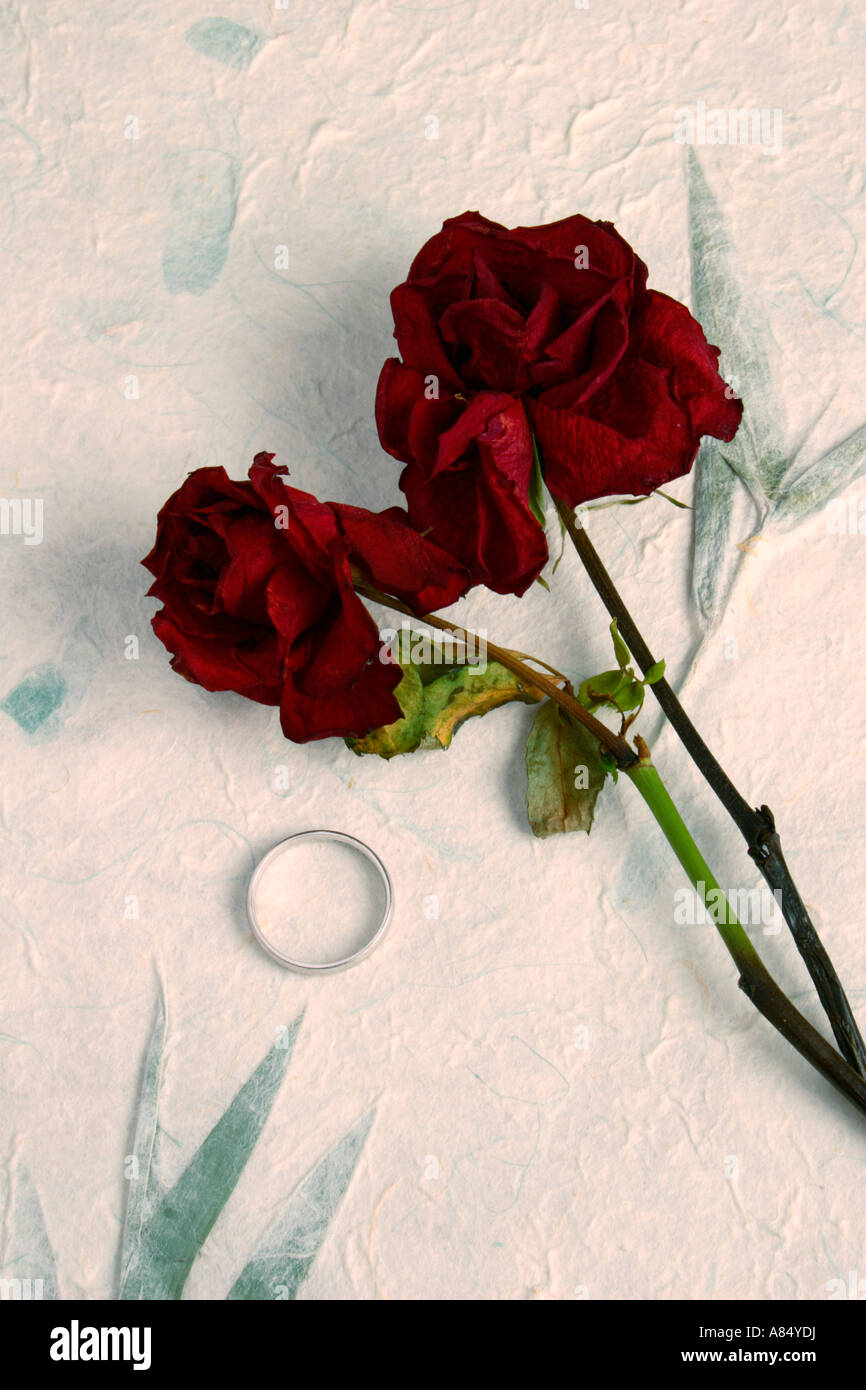 Dead Roses et anneau de mariage. Photo Stock