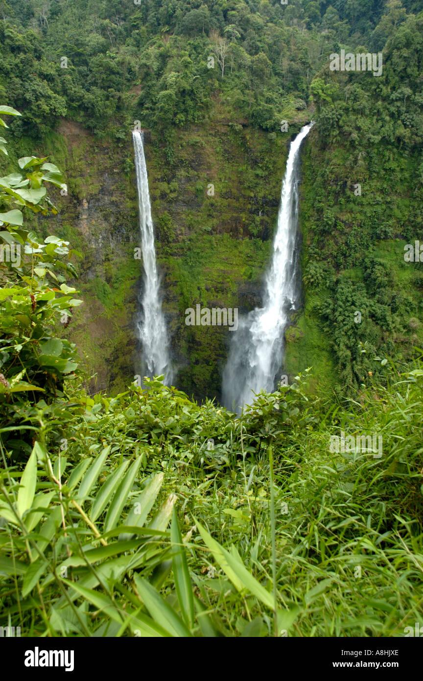 Cascade de Tad Fane Plateau des Bolavens près de Pakse Laos Banque D'Images