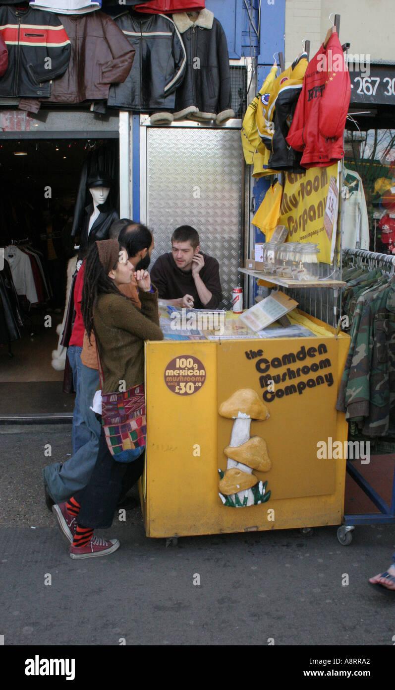Les champignons magiques à vendre dans Camden London England UK Banque D'Images