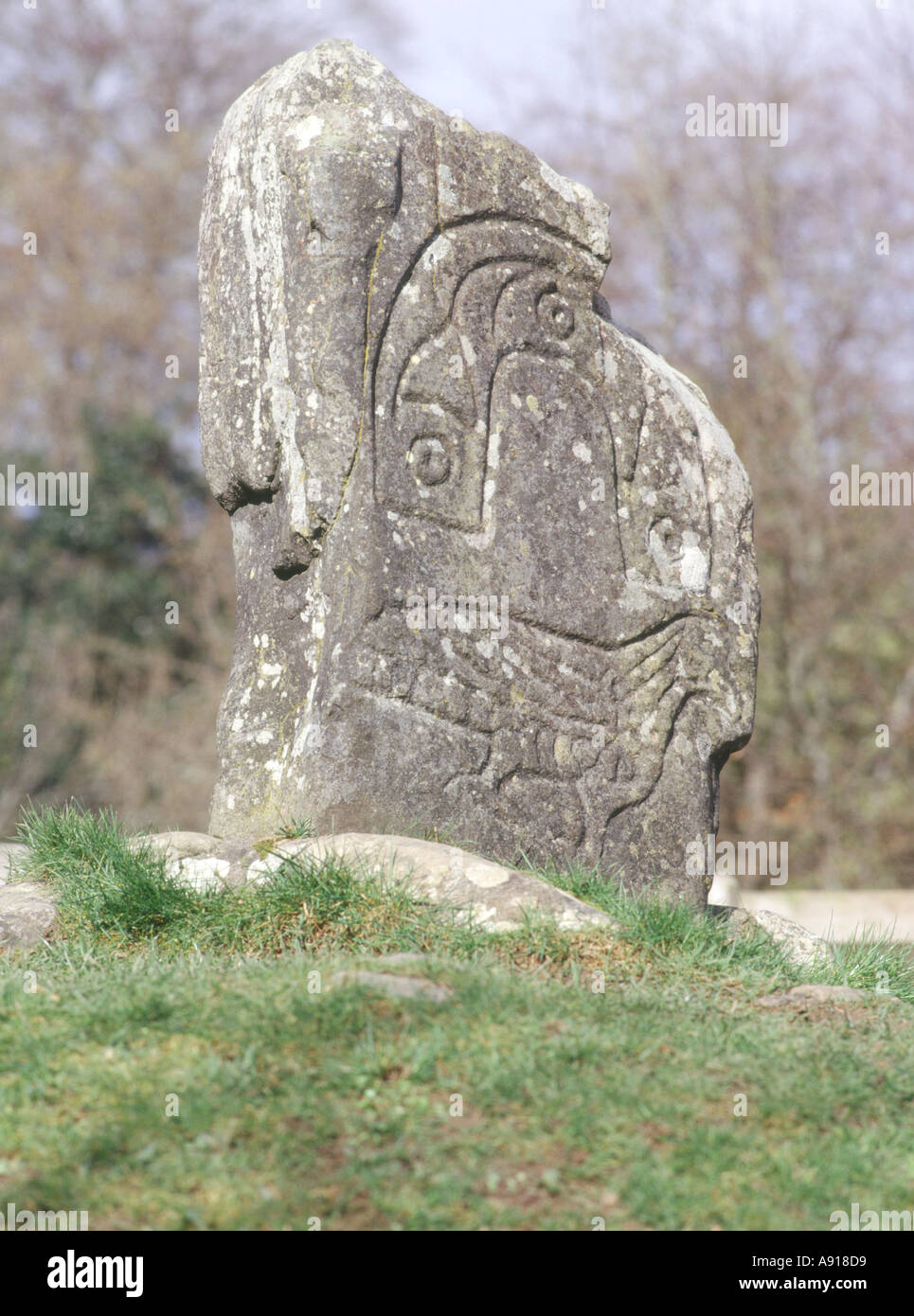dh Eagle Stone ecosse STRATHPEFFER ROSS CROMARTY Art celtique Pictush symbole de sculpture de pierres debout pictueuses sculptées par pictush Banque D'Images