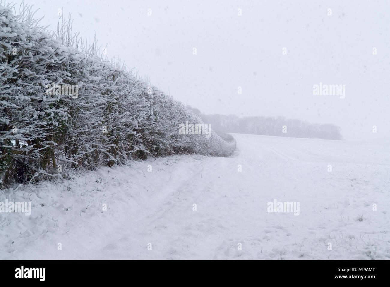 Campagne du Kent près de Meopham dans la neige de l'hiver Banque D'Images
