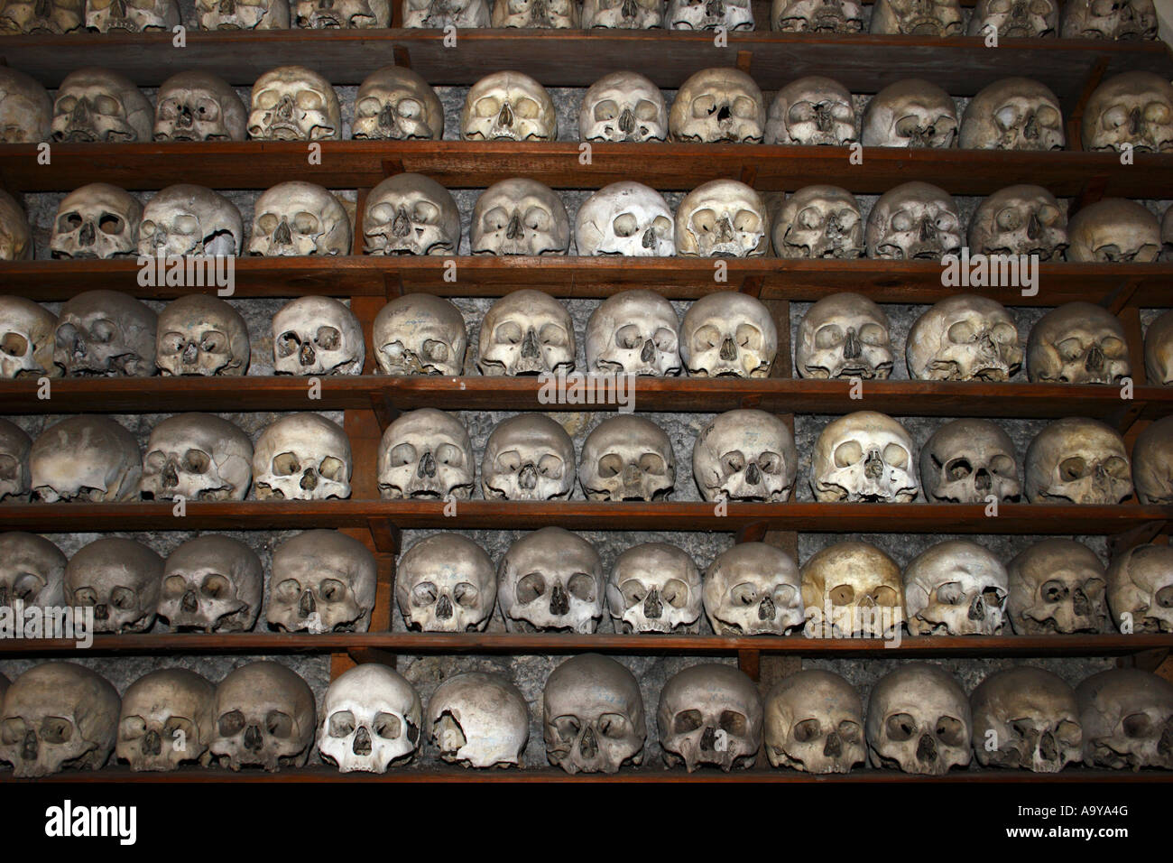 Des crânes humains à St Leonards Church, Hythe, dans le Kent, en Angleterre. Banque D'Images