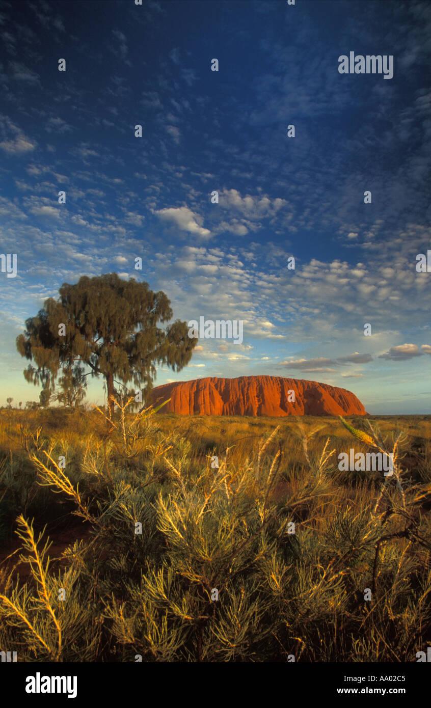 Ayers Rock Uluru Territoires du Nord Australie Banque D'Images