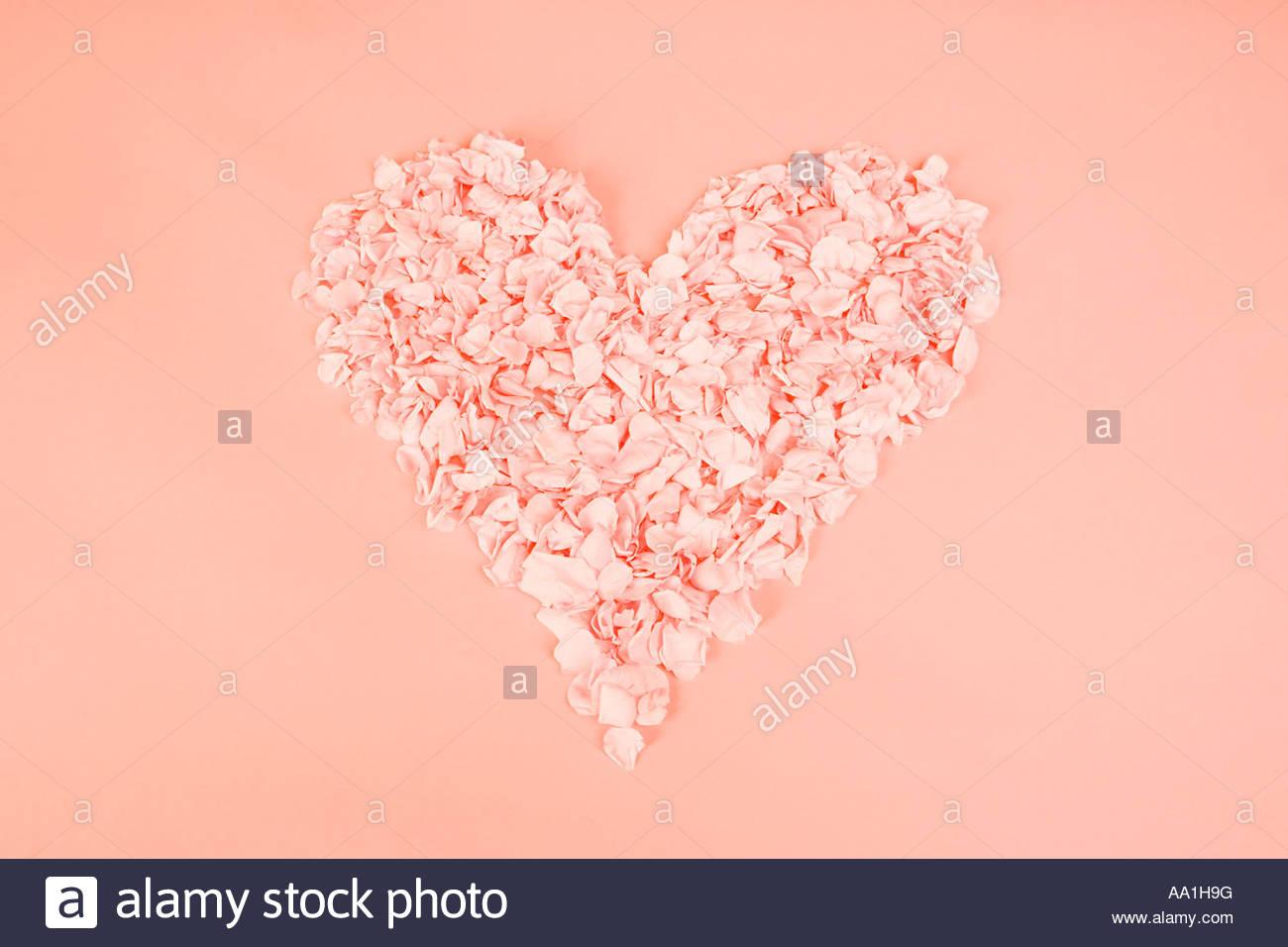 Forme de coeur de pétales Photo Stock