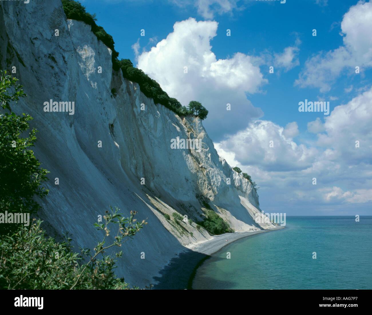 Craie précipitée falaises de møns klint, Møn, danemark Banque D'Images