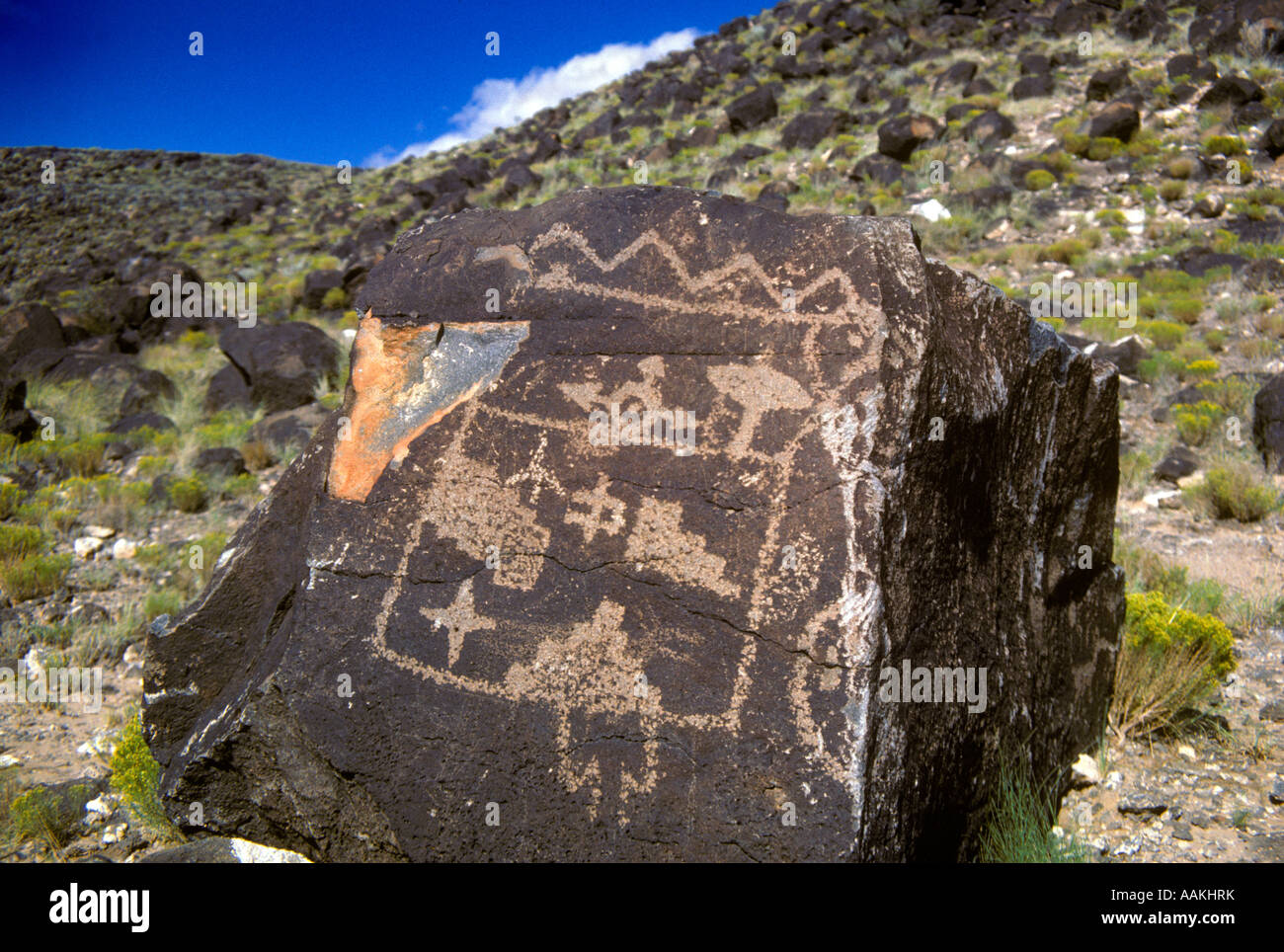 Marquages de pétroglyphes sur ROCK IN INDIAN PARK ALBUQUERQUE AU NOUVEAU MEXIQUE USA Photo Stock