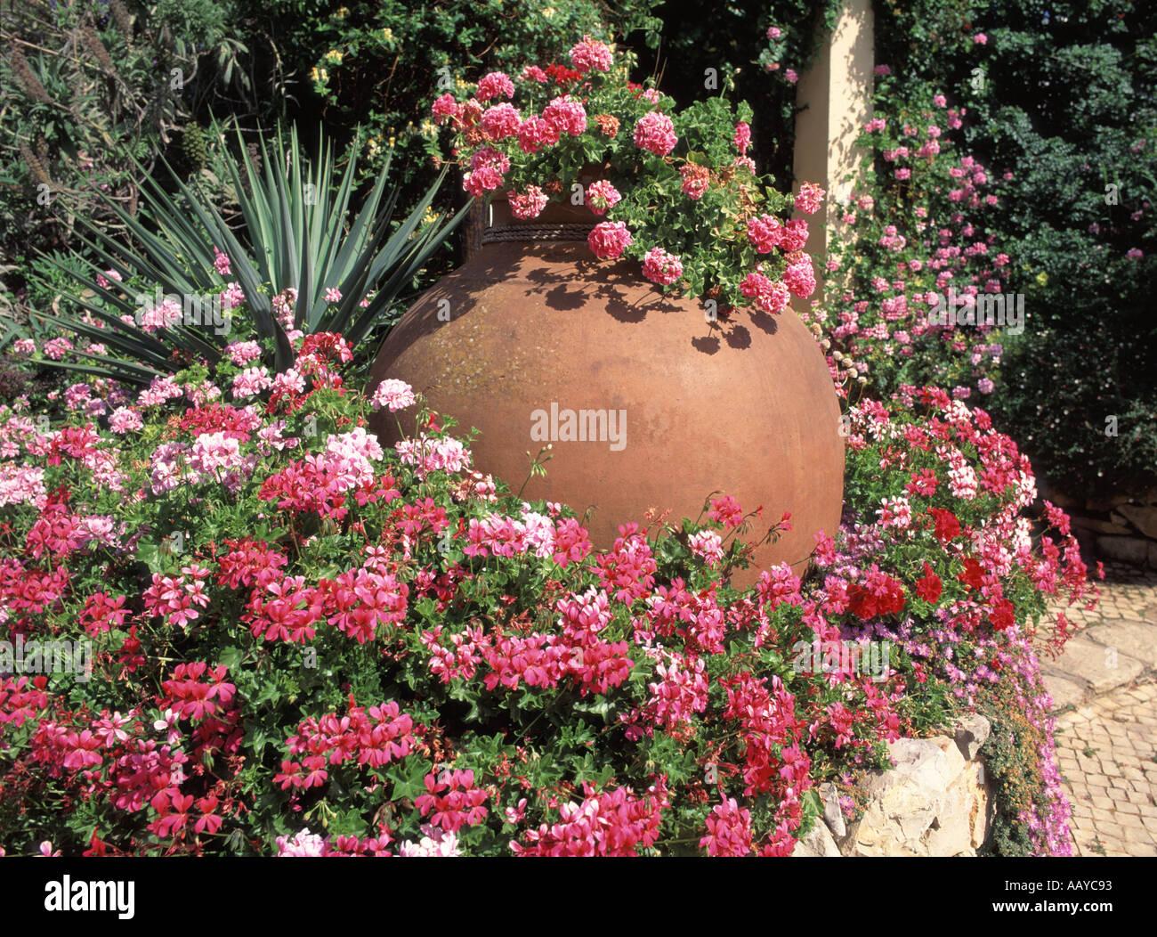 vilamoura algarve grand pot en argile en fleur pelargonium peltatum lit avec g ranium lierre. Black Bedroom Furniture Sets. Home Design Ideas