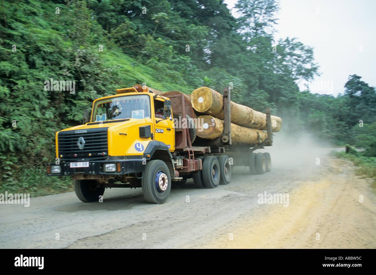 La forêt, l'exploitation forestière au Gabon Photo Stock