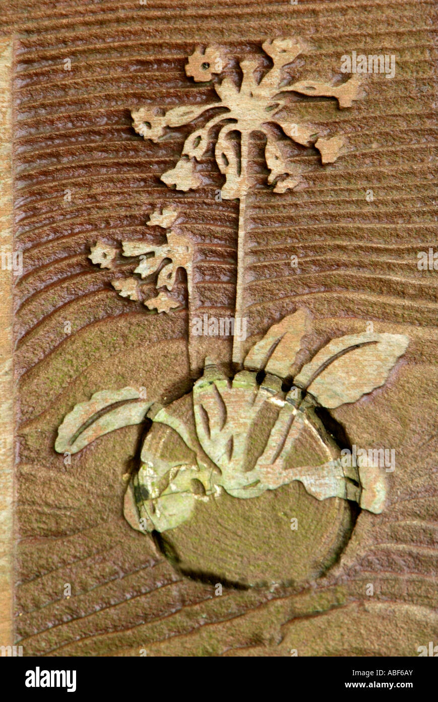 Primula veris coucou bleu fleur sauvage wood grain British UK brun nature symbole sculpture haut-relief naturel sign Banque D'Images