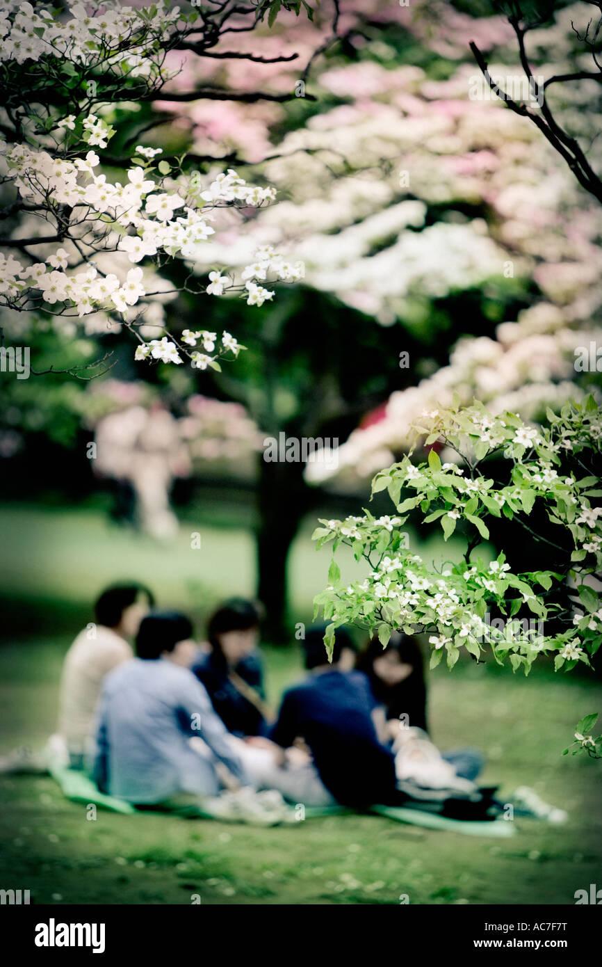 Pique-nique en famille dans un jardin japonais Banque D'Images