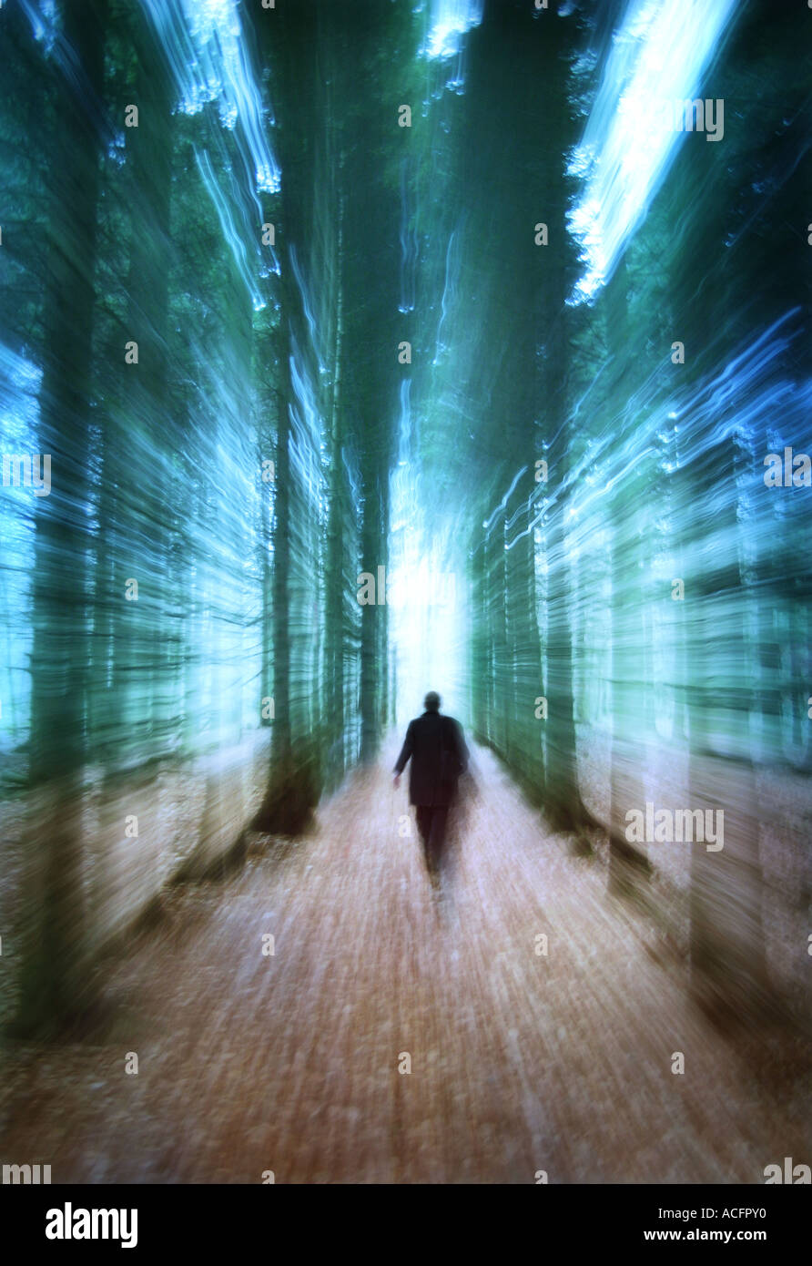 Photo d'un homme marchant à travers les arbres Photo Stock
