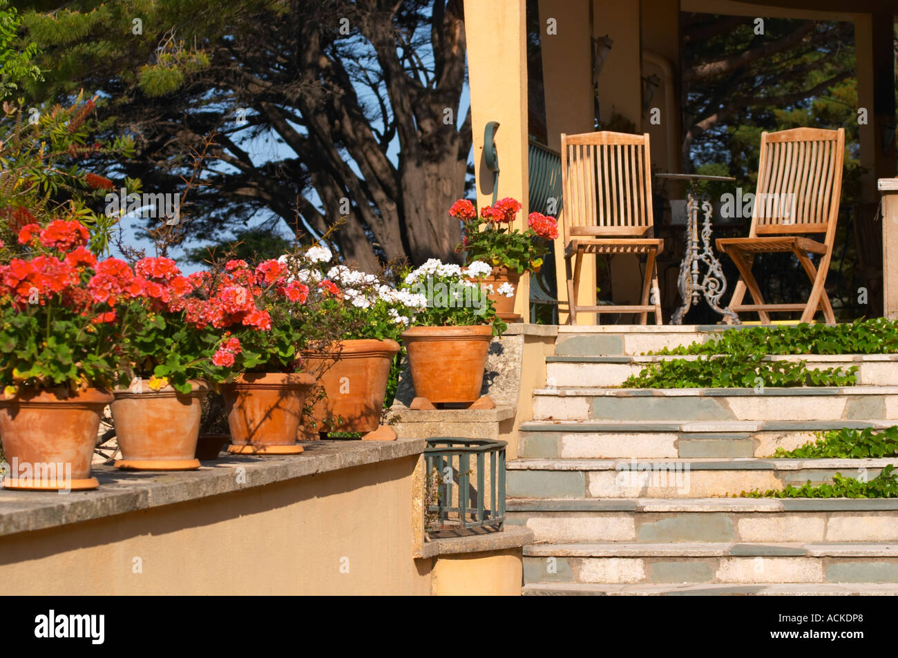 Terrasse en bois de teck deux chaises de jardin sur la ...