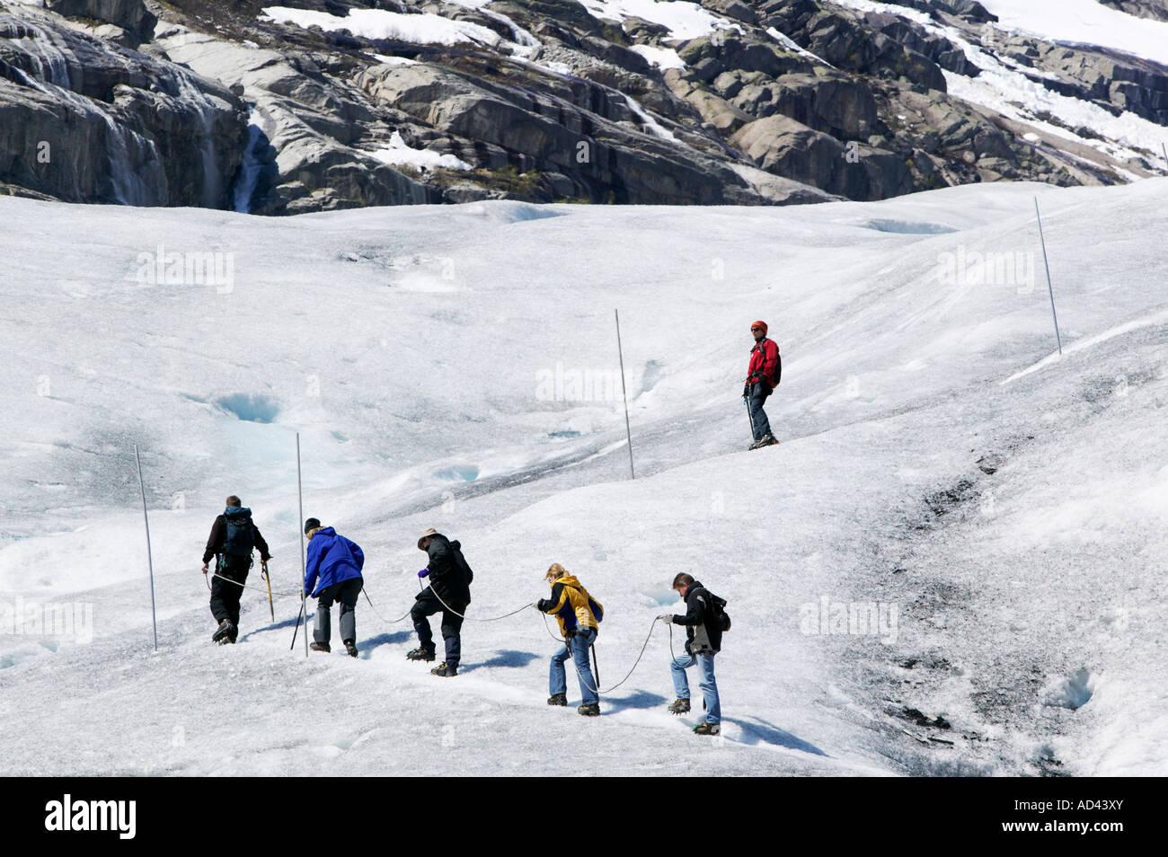 Randonnée guidée sur le glacier Nigardsbreen dans le Parc National de Jostedalsbreen Lustre Sogn og Fjordane Norvège Banque D'Images
