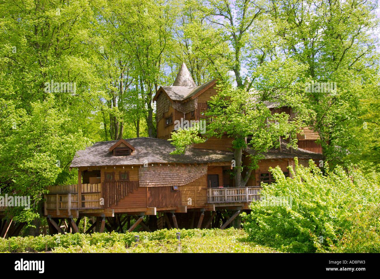 Maison de l'arbre au jardin d'Alnwick Northumberland Royaume-uni Photo Stock