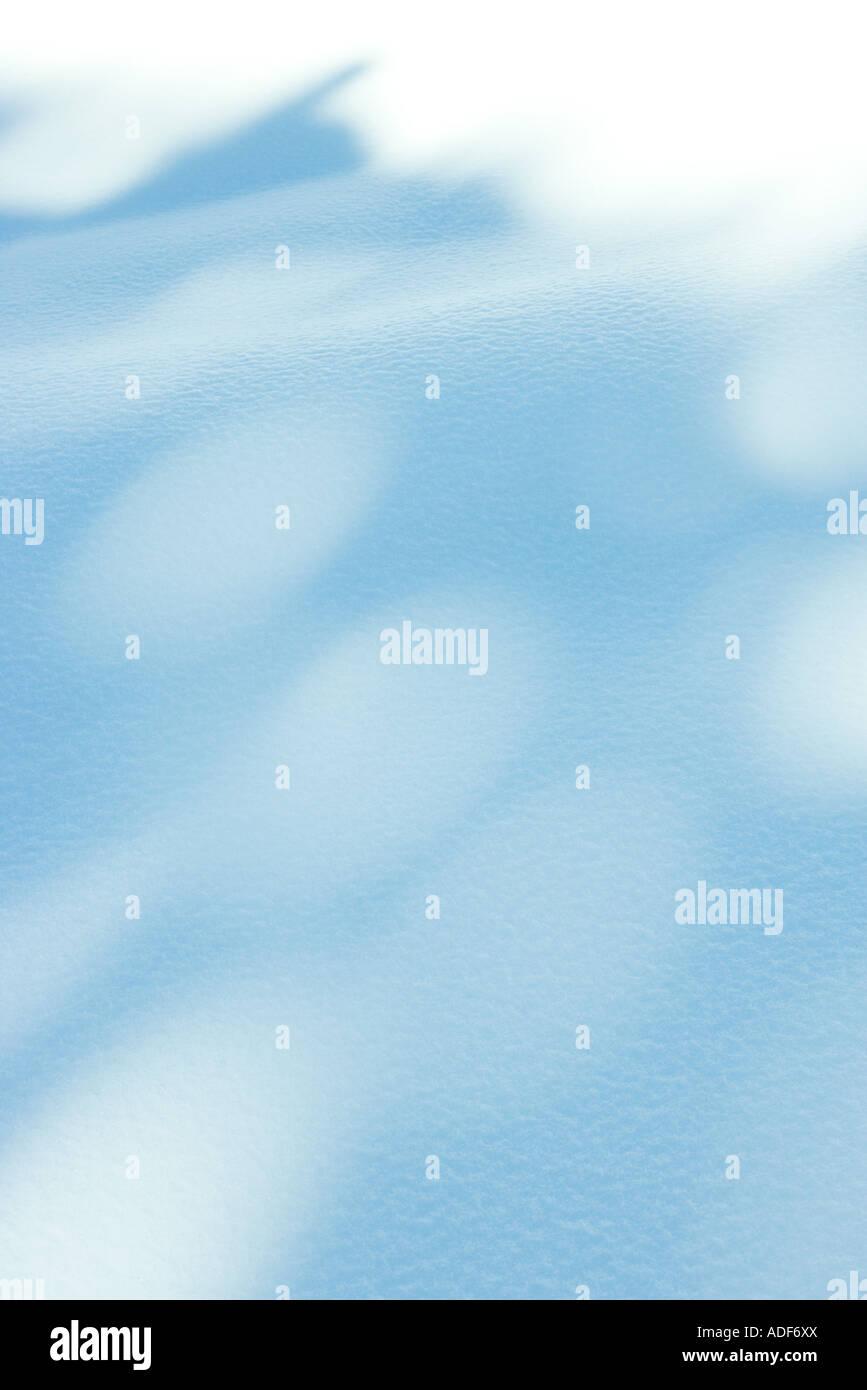 Ombres sur la neige Banque D'Images