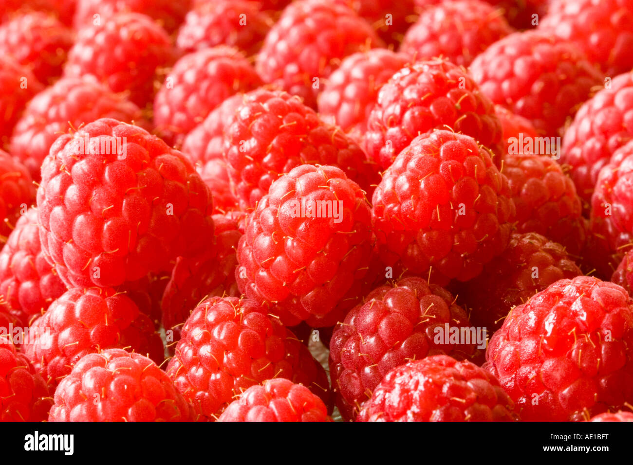 Raspeberries exposés à la vente Photo Stock