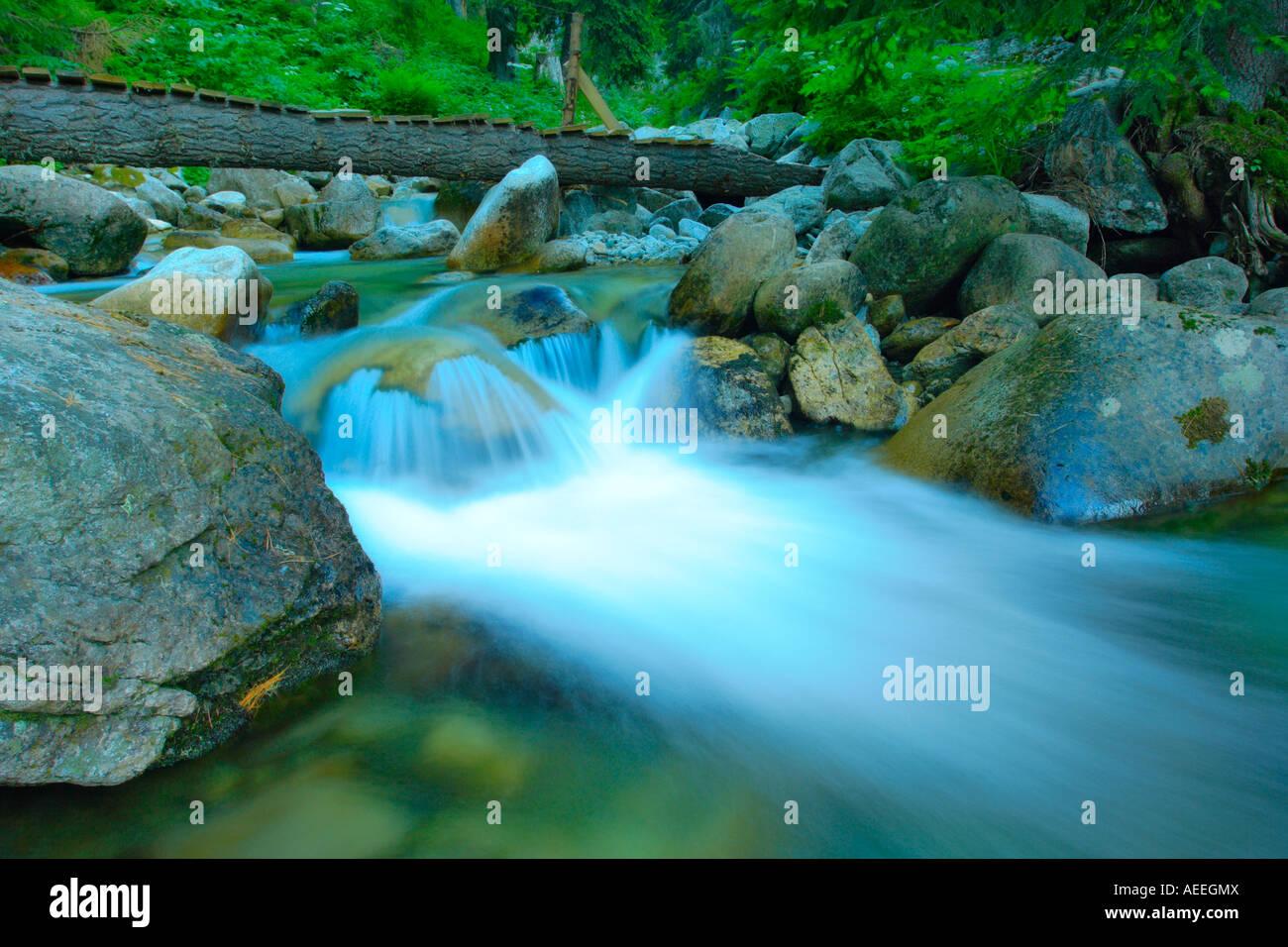 Rivière impétueuse Photo Stock