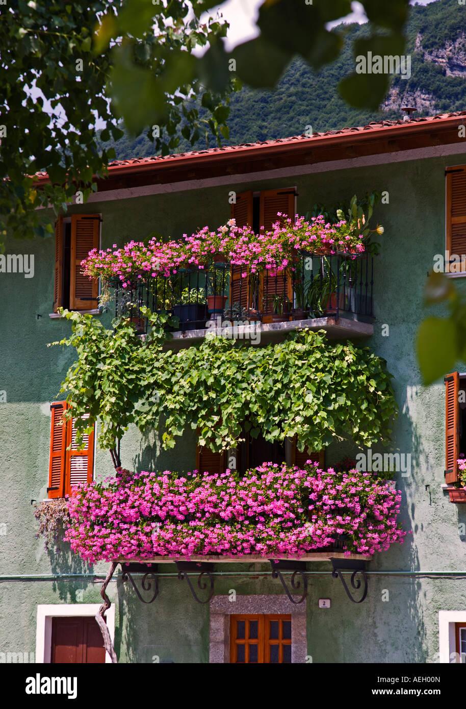 Balcon Avec Fleurs Et Plantes Grimpantes Crone Le Lac D Idro Lombardie Italie Photo Stock Alamy