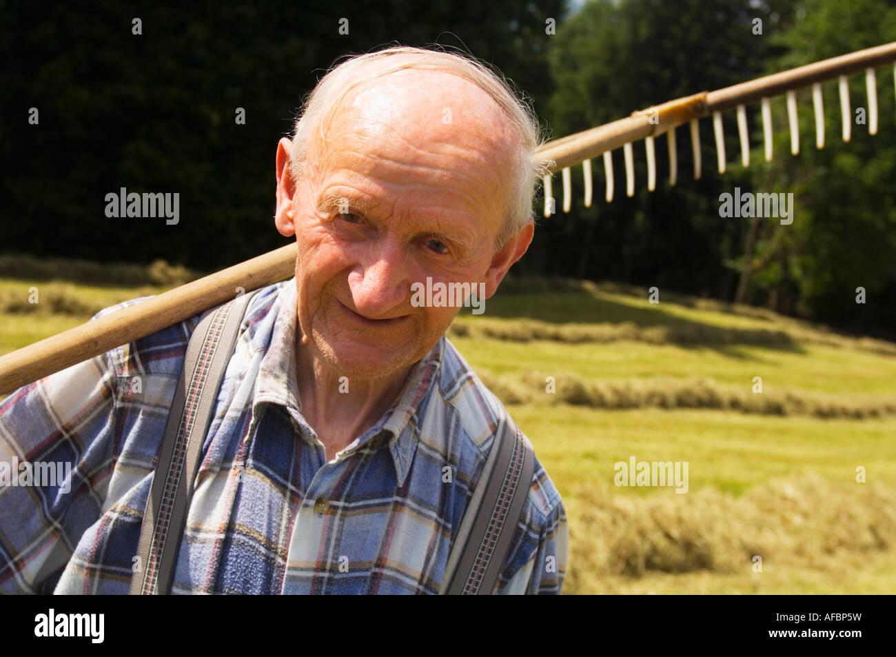 L'Autriche, Salzburger Land, la récolte de foin Photo Stock