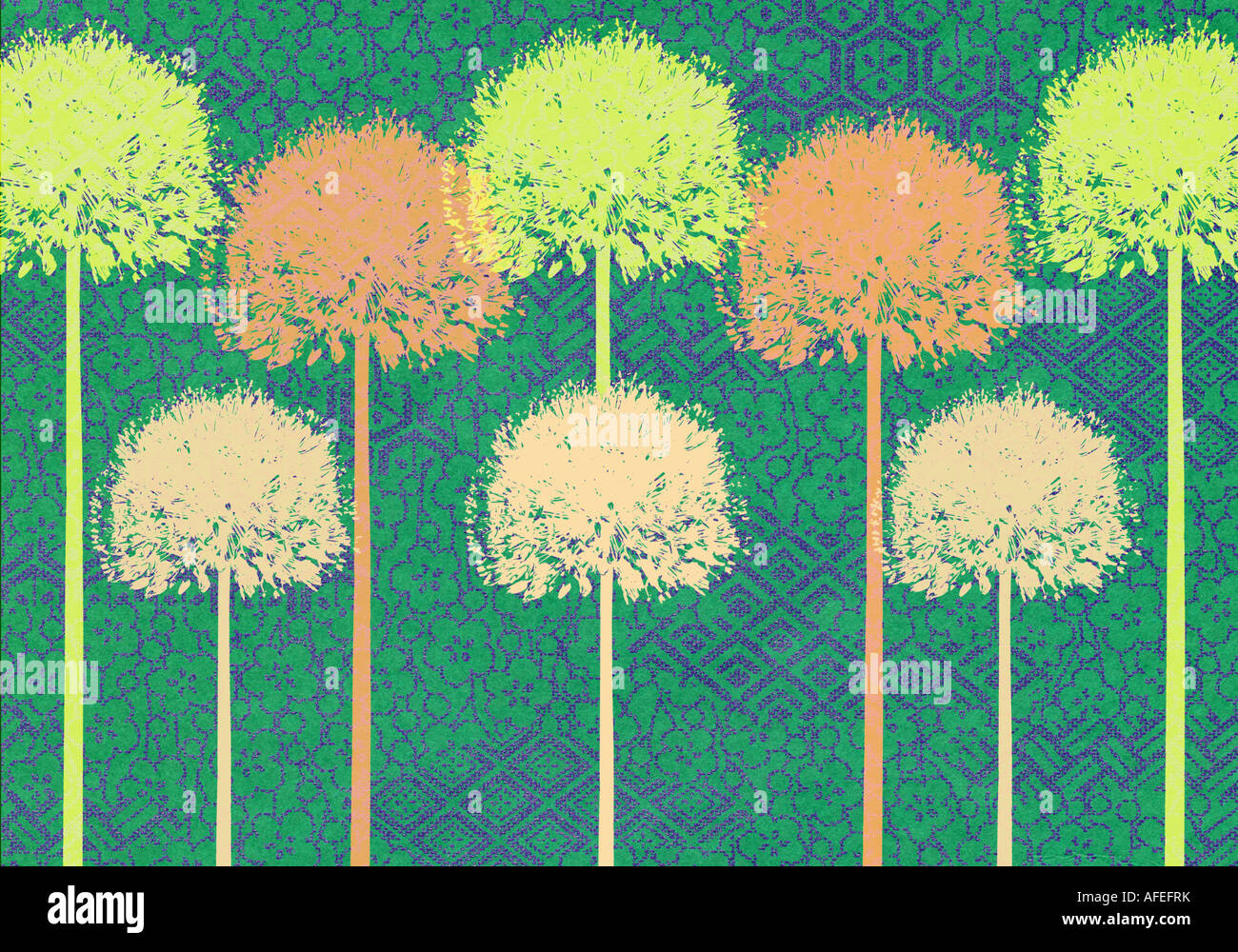L'étape et répéter l'illustration de l'Allium Photo Stock
